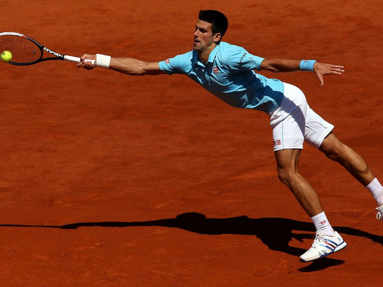 Novak Djokovic: Has booked his place in the French Open final