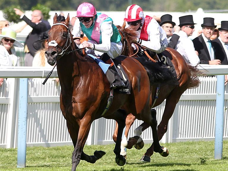 Night Of Thunder chases home Kingman at Royal Ascot