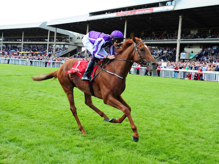 Australia: Barely came off the bridle in winning the Irish Derby