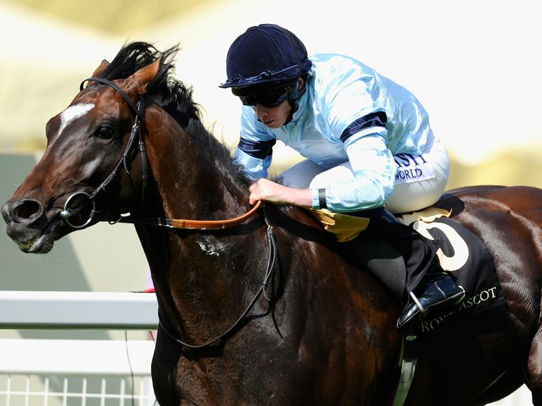 Telescope: Could face 11 rivals in the King George at Ascot