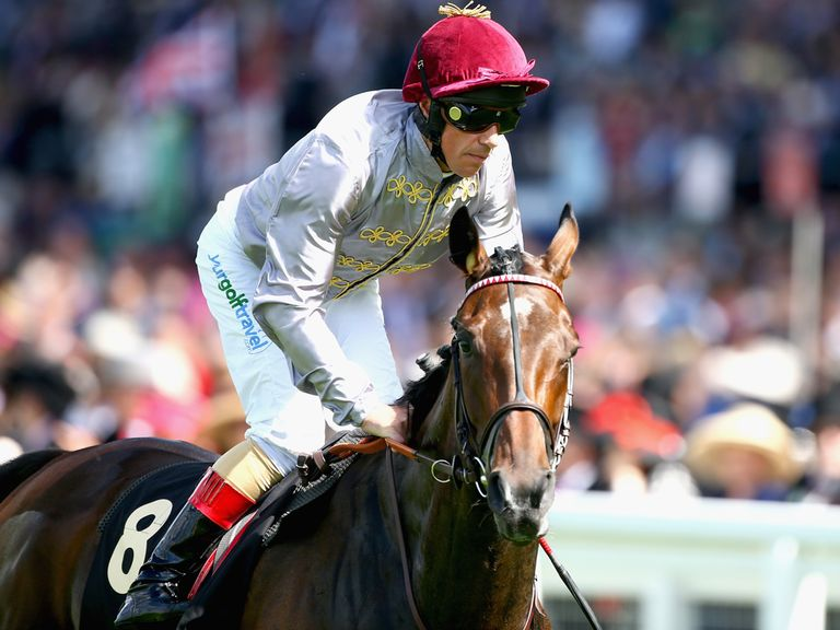 Treve: On way back to racing action