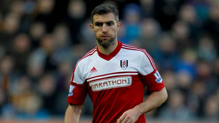 Aaron Hughes: Has linked up with Brighton on a one-year contract