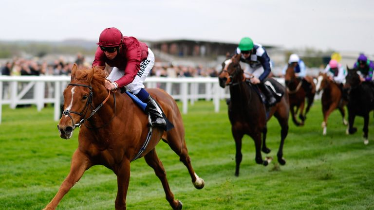 Eagle Top: Alex is tipping the Pivotal colt for a win in Ascot's King George VI and Queen Elizabeth Stakes