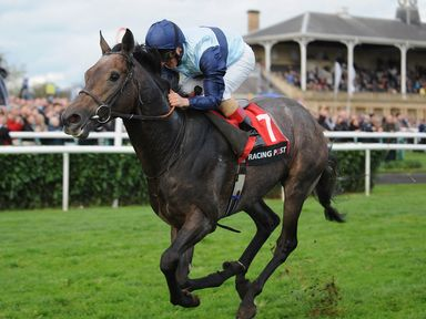 DONCASTER, ENGLAND - OCTOBER 26:  Andrea Atzeni riding Kingston Hill winners of The Racing Post Trophy (Group One) race during the Racing Post Trophy Meeti