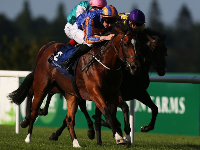 Gleneagles: Won again at the Curragh