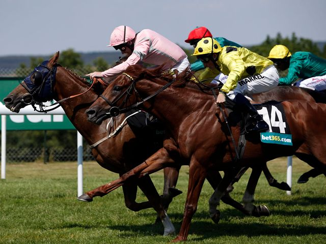 Sennockian Star beats his stablemates to glory
