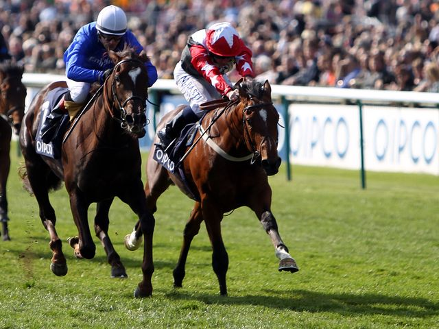 Aktabantay (right): Favourite for the Solario Stakes