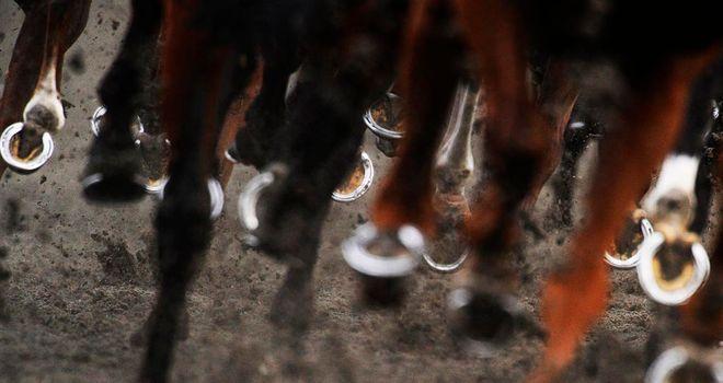 Horses Hooves at Kempton Park