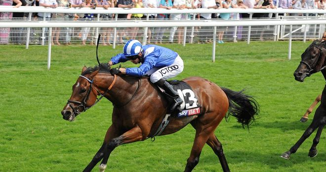 Muthmir: Stewards' Cup favourite