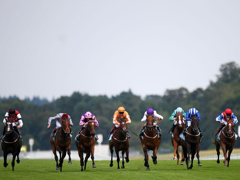 Explosive Lady (left) is fancied to score at Ripon