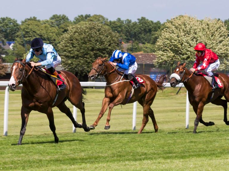 Snap Shots (r) ran a brave race in defeat at Ripon