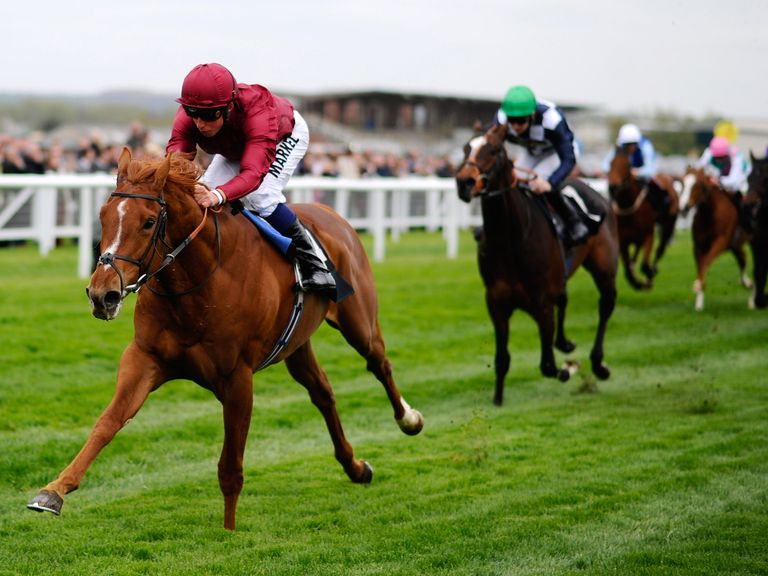 Eagle Top: Could run at York
