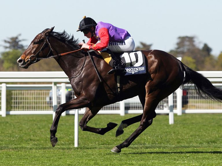 Estimate famously won the Ascot Gold Cup last year