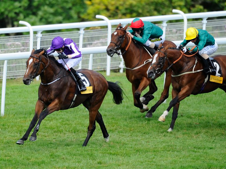 Highland Reel is among the 45 entries