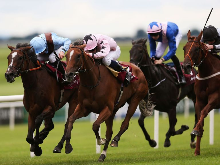 Mango Diva: Worth a bet at Goodwood today