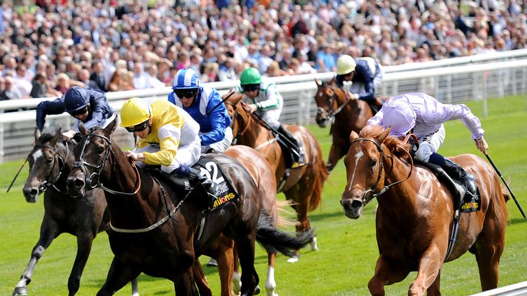 Dutch Connection (right) franked Faydhan's form at York