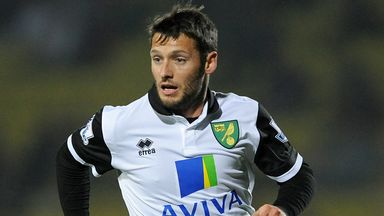 Wes Hoolahan: Staying at Norwich for two more years