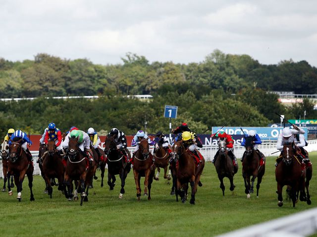 Intrinsic (far right) wins the Stewards' Cup