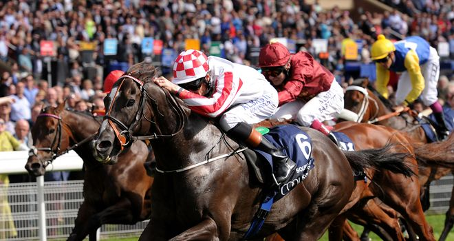 Sole Power: Features among bumper entry for Haydock