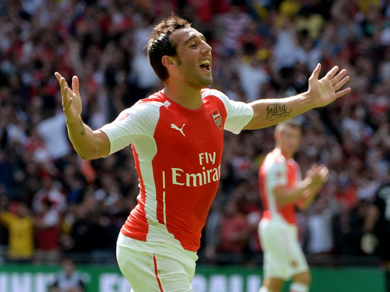 Santi Cazorla: Not impressed with transfer rumours