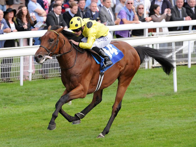 Learner The Gurkha has myriad of options after Sussex thriller