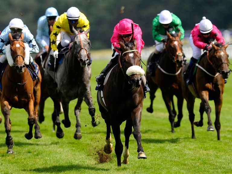 Retirement Plan: Set for the Ebor