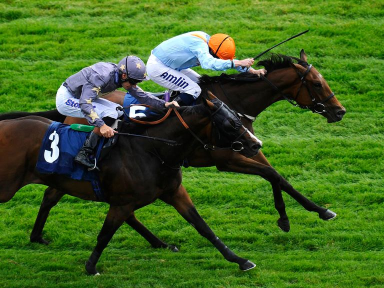 Tatlisu (orange cap): Good bet in the Great St Wilfrid