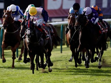 Bronze Angel (yellow cap) ridden by Louis Steward wins the Betfred Cambridgeshire (Heritage Handicap) during day three of The Cambridgeshire Meeting at New