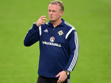 Michael O'Neill: Plans in place to cope with McKinlay's exit