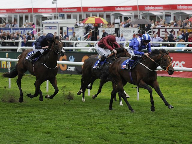 Estidhkaar denies War Envoy (left) and Aces to win the Champagne Stakes.