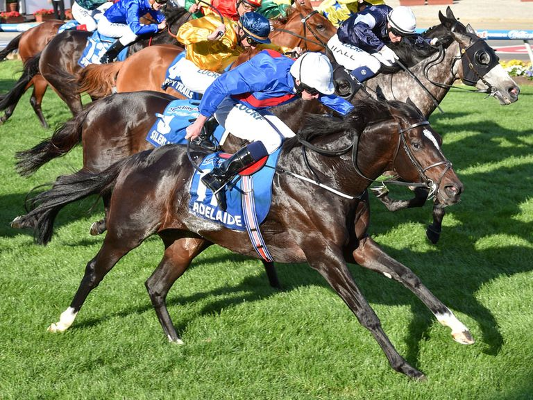 Adelaide defeats Fawkner in the Sportingbet Cox Plate.
