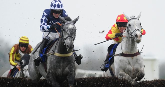 Ziga Boy stuck on well to win the Sky Bet Chase