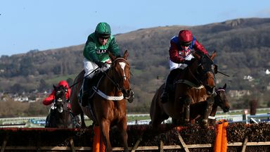 Peace and Co: On target for Champion Hurdle despite breathing opteration