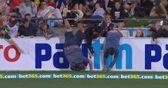 Cricket fan takes a spill!