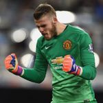 David de Gea: Has had superb season for Manchester United