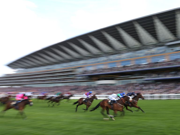 Washington DC: Windsor Castle winner is likely to be aimed at the Molecomb Stakes