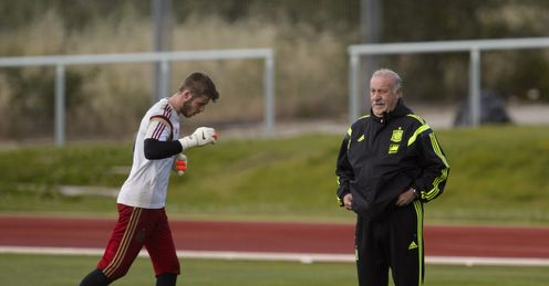 Vicente del Bosque : Has warned David de Gea must play