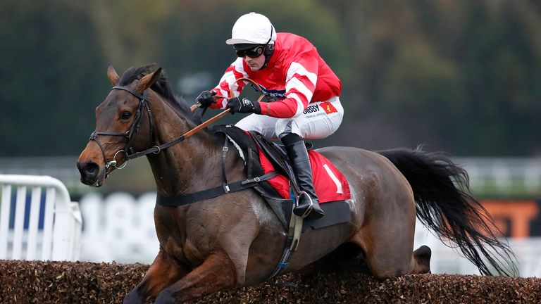 Coneygree: Injury prone since winning the Gold Cup