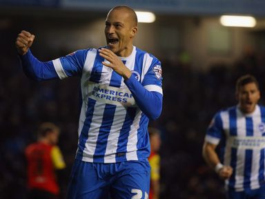 Bobby Zamora: Second spell with Brighton is over