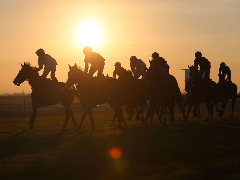 Horses from Coolmore Stud on a post race gallop at Curragh Racecourse