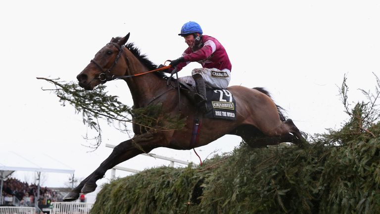 Rule The World ridden by David Mullins won the 2016 Grand National