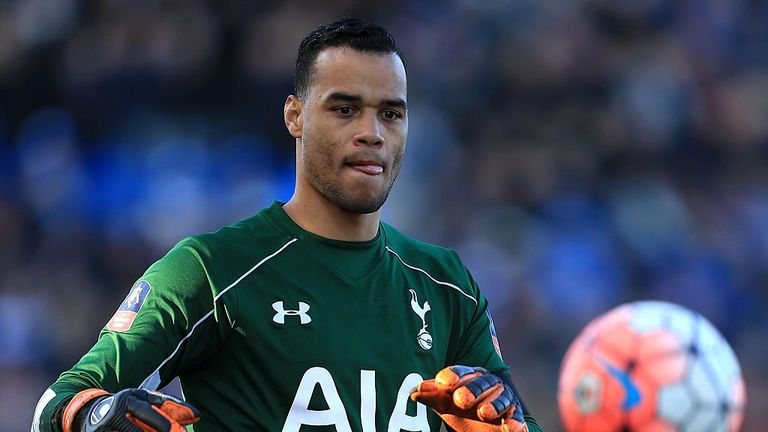 Michel Vorm arrived at White Hart Lane from Swansea in 2014