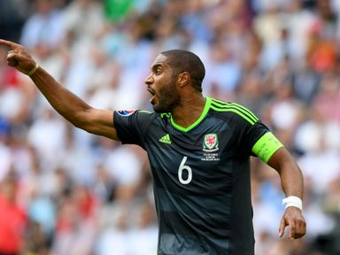 Ashley Williams: Should be fit to face Belgium