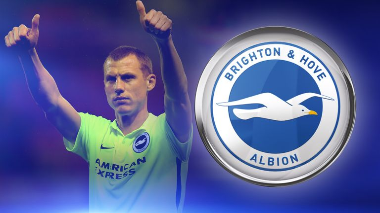 Steve Sidwell is hoping to help Brighton to the Premier League