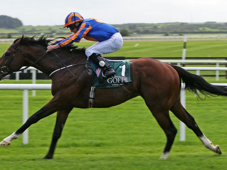 Image result for churchill national stakes