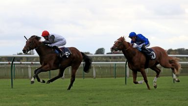 Cracksman winning the Breeders Supporting Racing EBF Maiden Stakes at Newmarket
