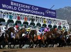 Breeders' Cup 2016 pictures