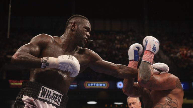 Wilder stopped fellow American Chris Arreola in eight rounds in July