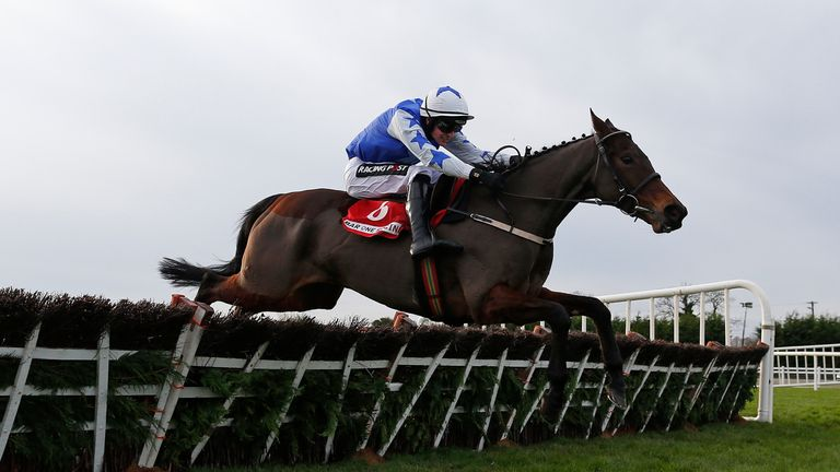 Airlie Beach wasn't at her best at Cheltenham
