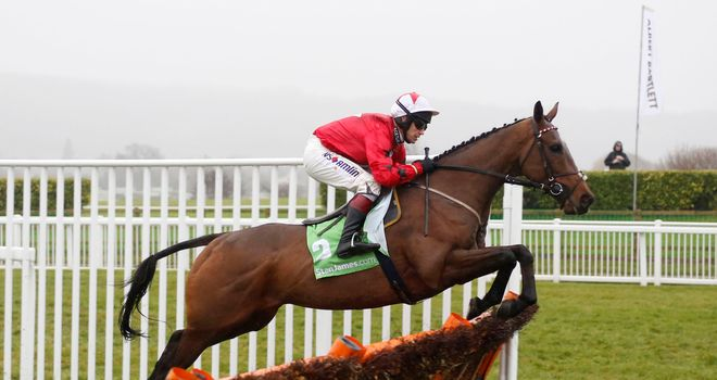 The New One on his way to victory under Richard Johnson at Cheltenham.